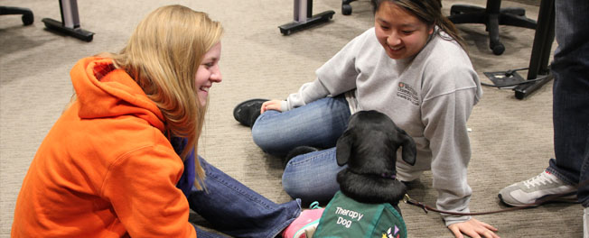 Photo of students with therapy dog